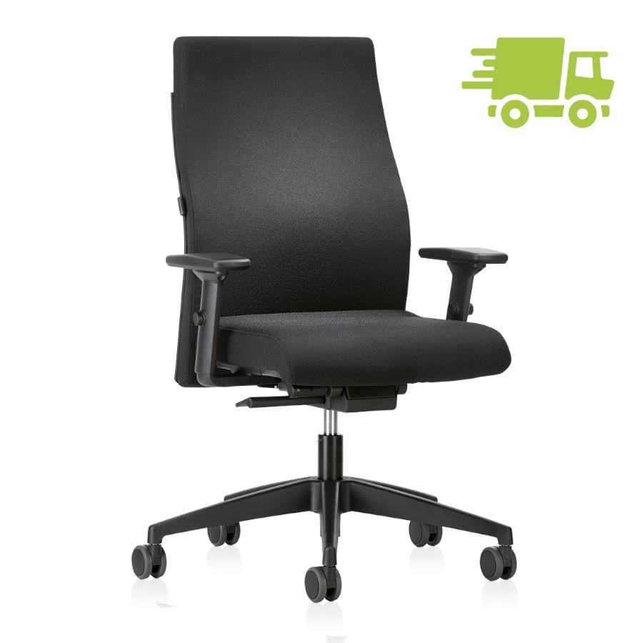 Interstuhl Ergonomic 139RS Ergonomischer Home Office Stuhl mit Polsterrücken ... IS30010