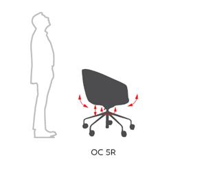 bewegungsmechanik-Occo